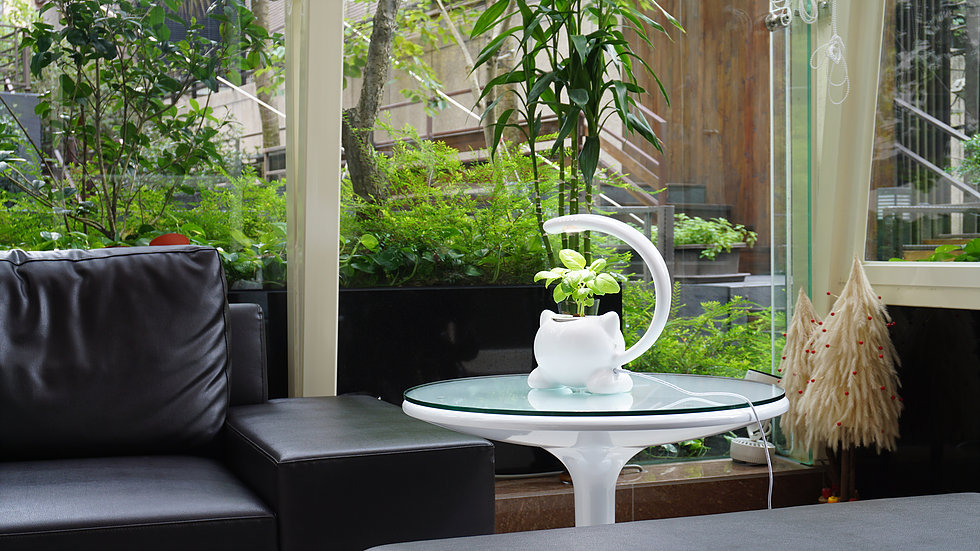 GrowGreen's mini indoor hydroponic plant pot
