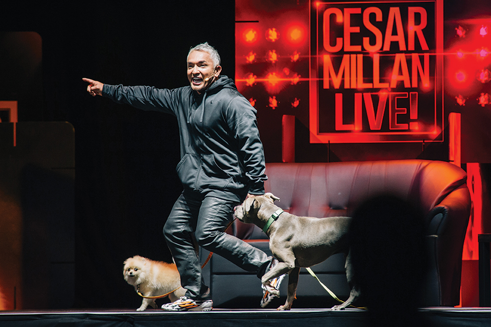 Millan performs live on stage in front of 14,000 people