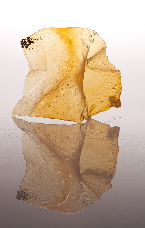 Parmesan crystal, a snack (Credit: Francesc Guillamet, courtesy of Phaidon)
