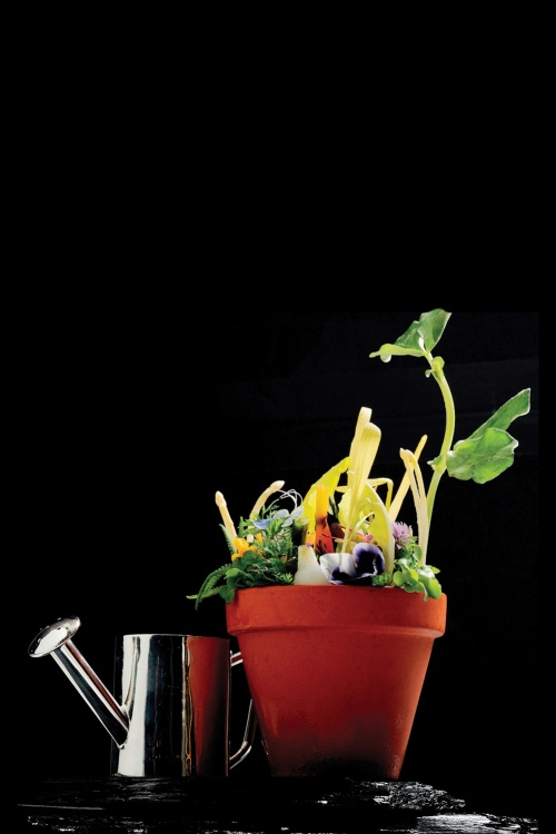 Opocensky's Flower Pot, available at the Krug Room at the Mandarin Oriental