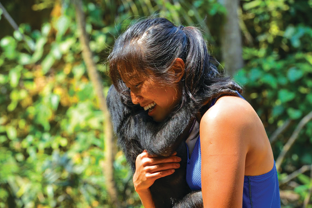 Laurel Chor with a bonobo in the Congo (Credit: Laurel Chor)