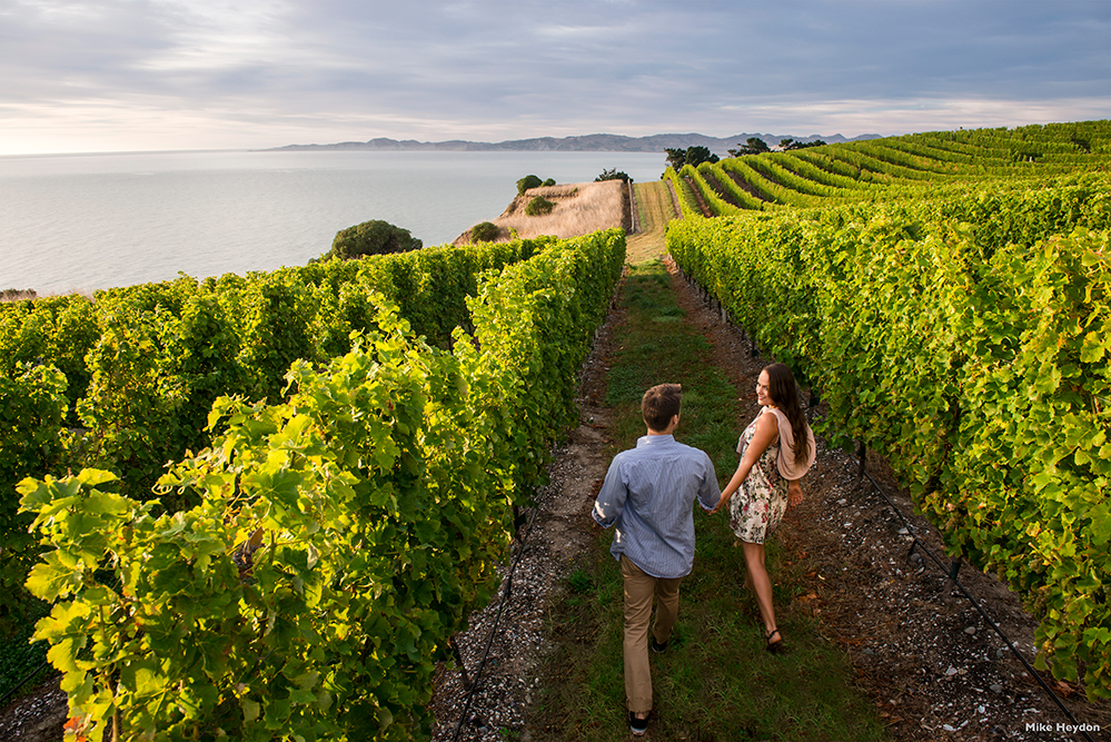 Take time to visit a winery in New Zealand (Photo by Mike Heydon)