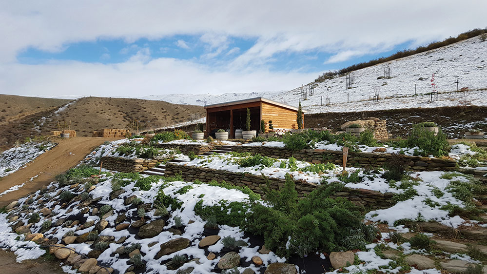 The prep shed and terrace garden in Otago (Credit: Kate Barnett)