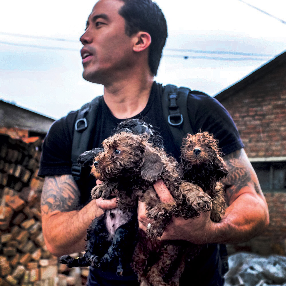 Ching rescuing puppies from a slaughterhouse