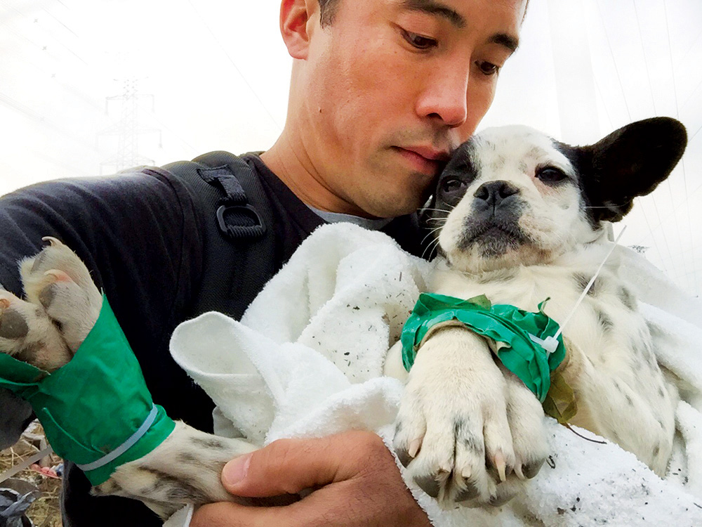 Ching holds a rescued dog whose paws are bound