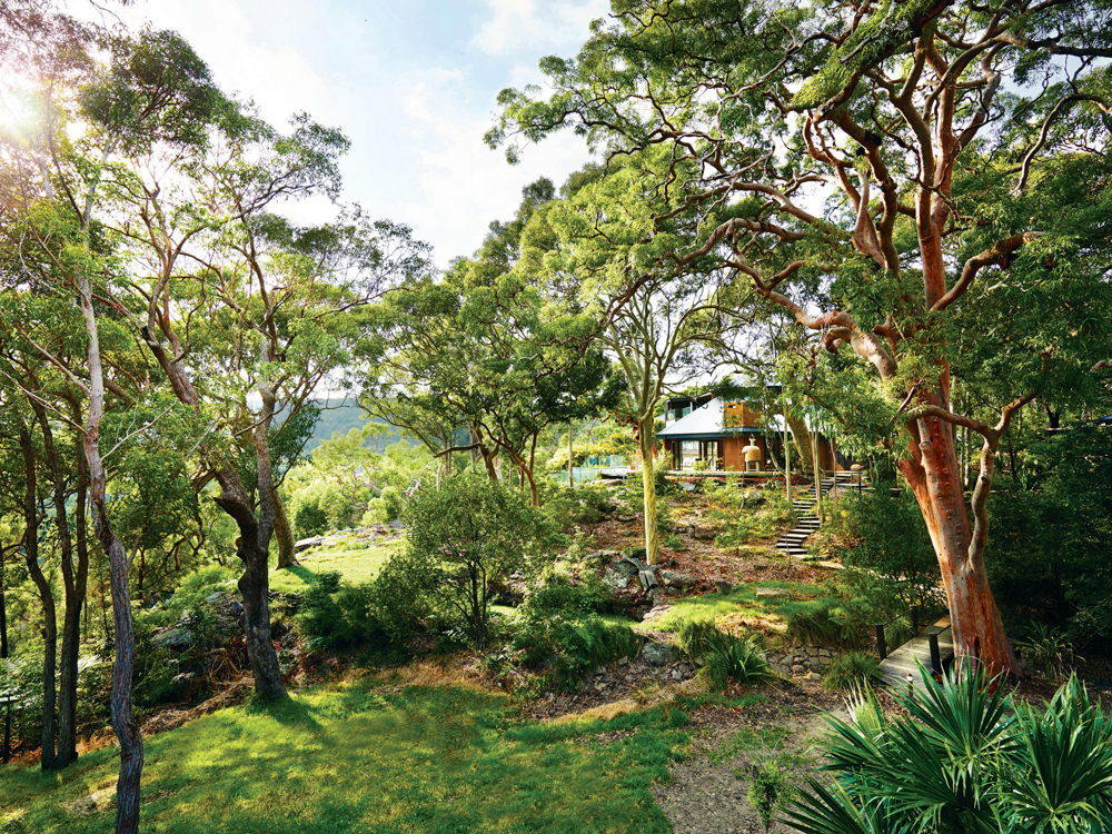 The property rests on a hillside in the bush