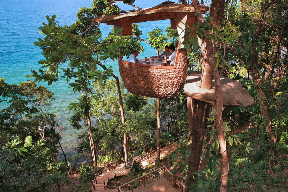 The Treepod Dining experience is your chance to dine in the jungle canopy