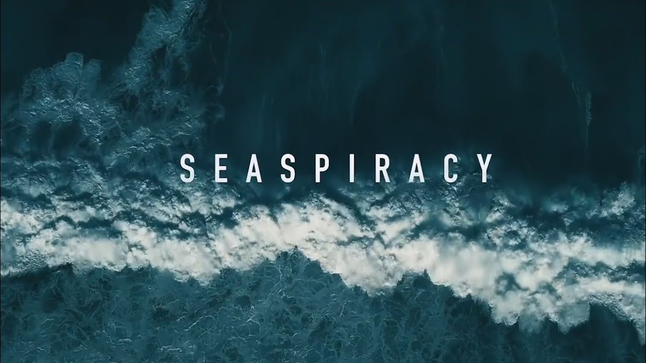 Seaspiracy: Netflix's latest documentary that's stirring up controversy —  Hashtag Legend